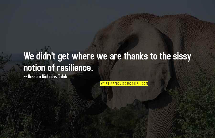 Resilience Quotes By Nassim Nicholas Taleb: We didn't get where we are thanks to