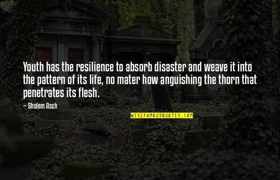 Resilience Quotes By Sholem Asch: Youth has the resilience to absorb disaster and