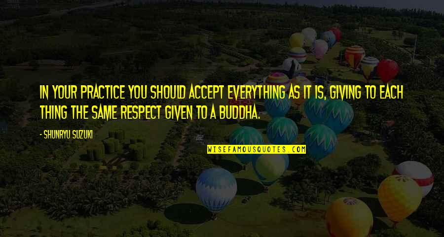 Respect Given Quotes By Shunryu Suzuki: In your practice you should accept everything as
