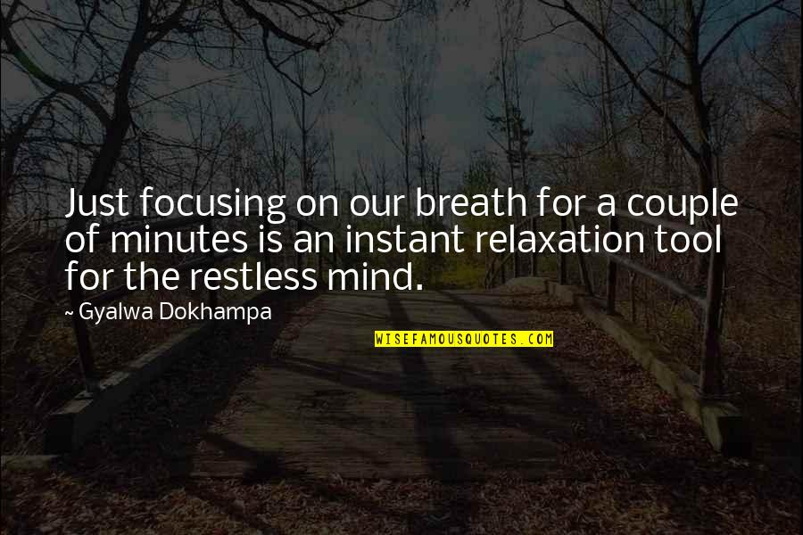 Restful Quotes By Gyalwa Dokhampa: Just focusing on our breath for a couple