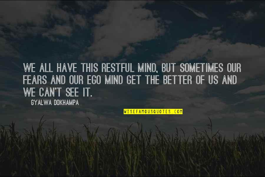 Restful Quotes By Gyalwa Dokhampa: We all have this restful mind, but sometimes