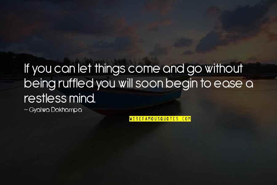 Restful Quotes By Gyalwa Dokhampa: If you can let things come and go