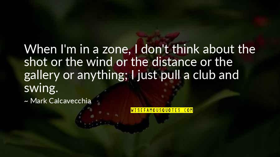 Restoration In Relationships Quotes By Mark Calcavecchia: When I'm in a zone, I don't think
