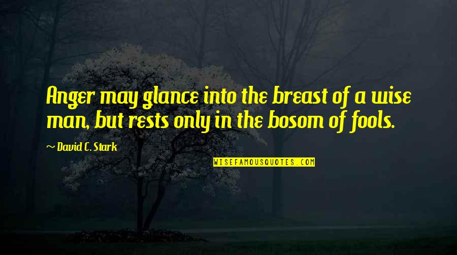 Rests Quotes By David C. Stark: Anger may glance into the breast of a