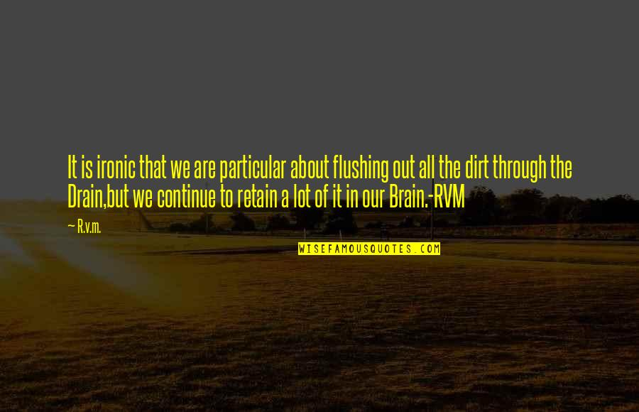 Retain Quotes By R.v.m.: It is ironic that we are particular about