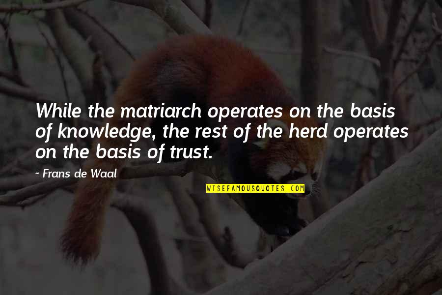 Return The Slab Quotes By Frans De Waal: While the matriarch operates on the basis of