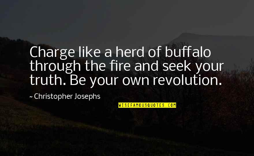 Revolution Quotes By Christopher Josephs: Charge like a herd of buffalo through the