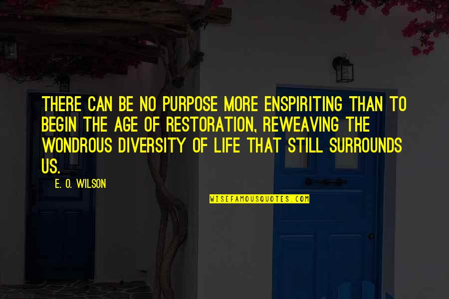 Reweaving Quotes By E. O. Wilson: There can be no purpose more enspiriting than