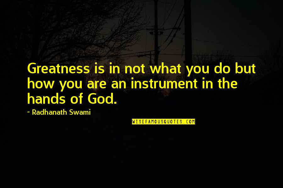 Rhinoceros Success Quotes By Radhanath Swami: Greatness is in not what you do but