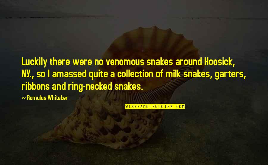 Ribbons Quotes By Romulus Whitaker: Luckily there were no venomous snakes around Hoosick,