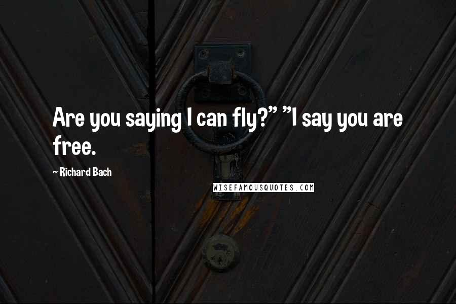 """Richard Bach quotes: Are you saying I can fly?"""" """"I say you are free."""