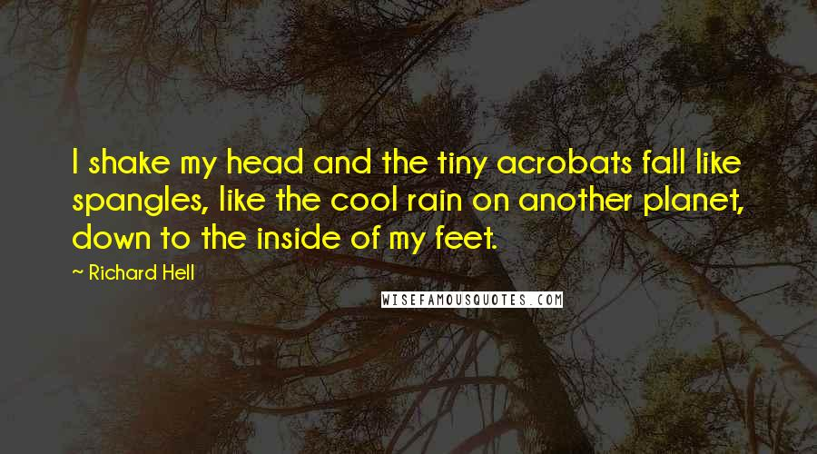 Richard Hell quotes: I shake my head and the tiny acrobats fall like spangles, like the cool rain on another planet, down to the inside of my feet.