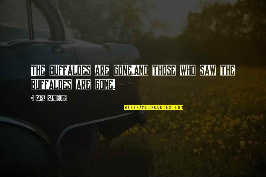 Richard Ii Quotes By Carl Sandburg: The buffaloes are gone.And those who saw the