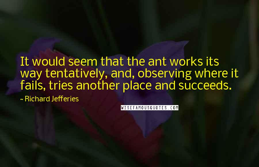 Richard Jefferies quotes: It would seem that the ant works its way tentatively, and, observing where it fails, tries another place and succeeds.