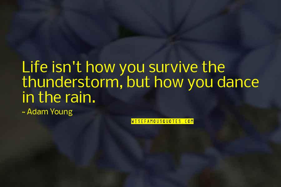 Richard Maltby Quotes By Adam Young: Life isn't how you survive the thunderstorm, but