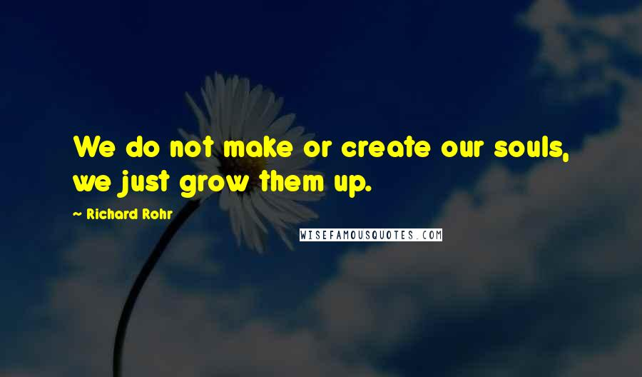 Richard Rohr quotes: We do not make or create our souls, we just grow them up.