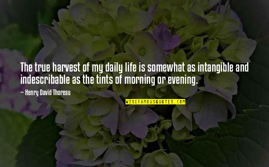 Richard Wilkinson Quotes By Henry David Thoreau: The true harvest of my daily life is