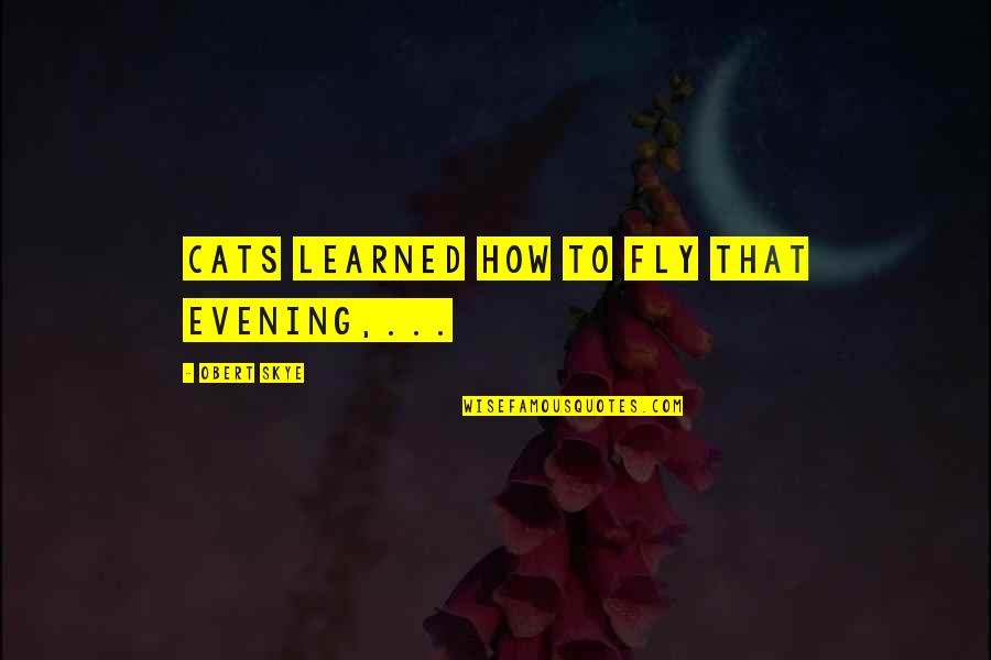 Richie Mccaw Motivational Quotes By Obert Skye: Cats learned how to fly that evening,...