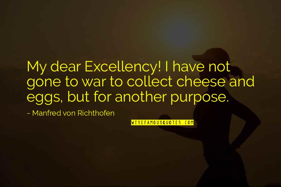 Richthofen Quotes By Manfred Von Richthofen: My dear Excellency! I have not gone to