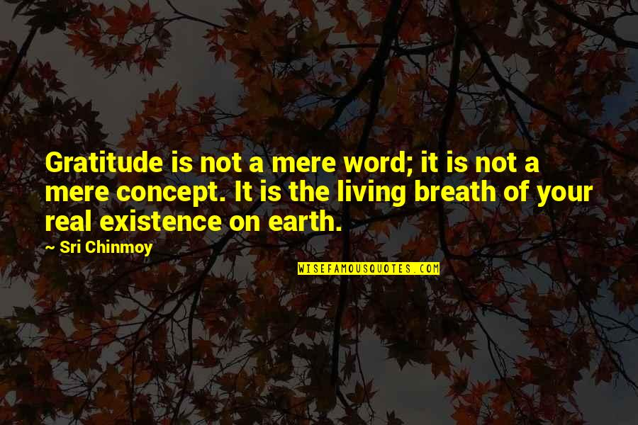 Rick Rosner Quotes By Sri Chinmoy: Gratitude is not a mere word; it is