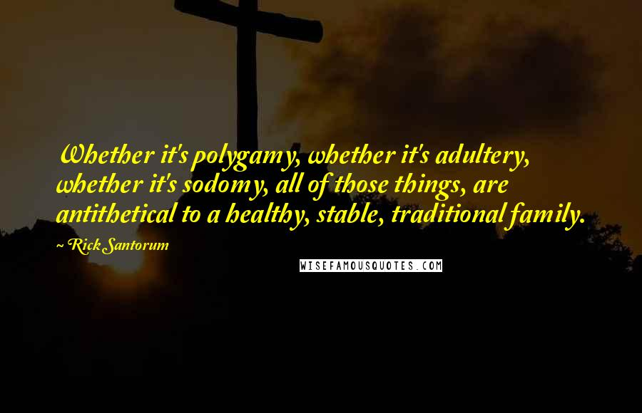 Rick Santorum quotes: Whether it's polygamy, whether it's adultery, whether it's sodomy, all of those things, are antithetical to a healthy, stable, traditional family.
