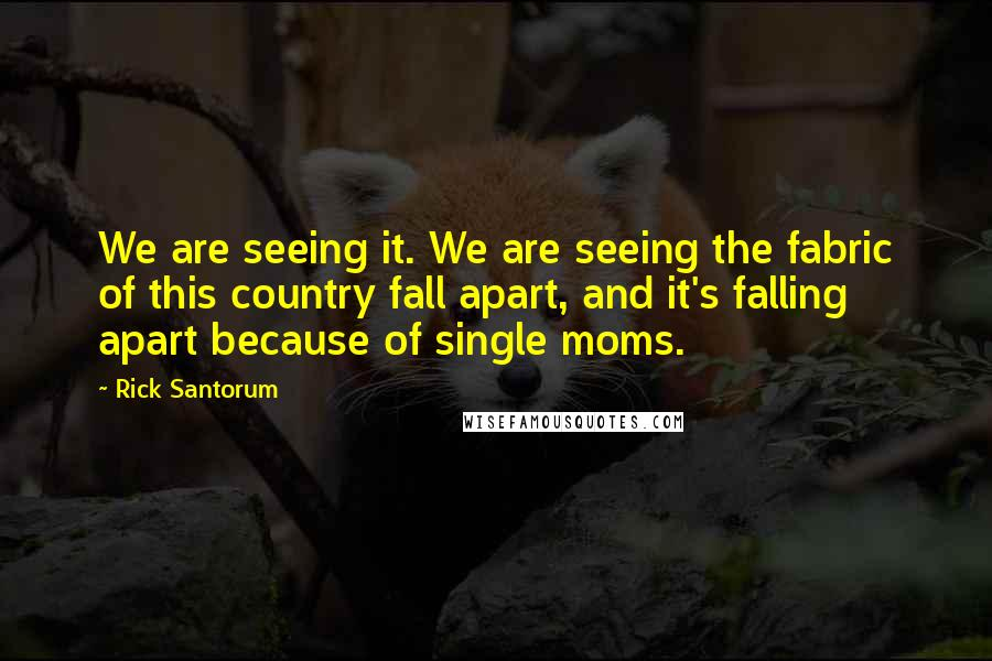 Rick Santorum quotes: We are seeing it. We are seeing the fabric of this country fall apart, and it's falling apart because of single moms.
