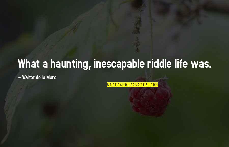 Riddle Life Quotes By Walter De La Mare: What a haunting, inescapable riddle life was.