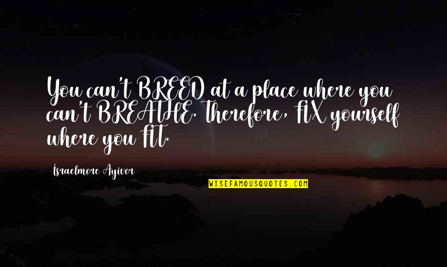 Right Place Right Time Quotes By Israelmore Ayivor: You can't BREED at a place where you
