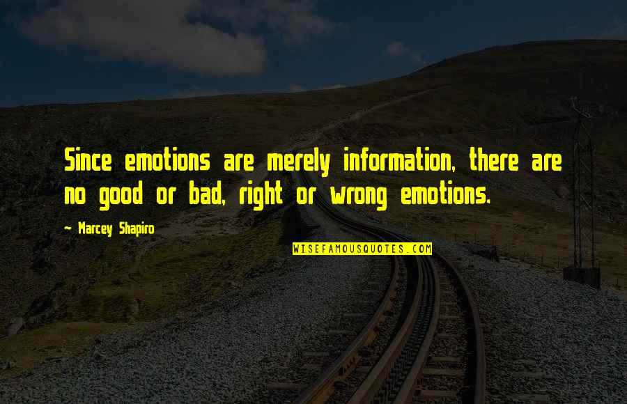 Right To Information Quotes By Marcey Shapiro: Since emotions are merely information, there are no