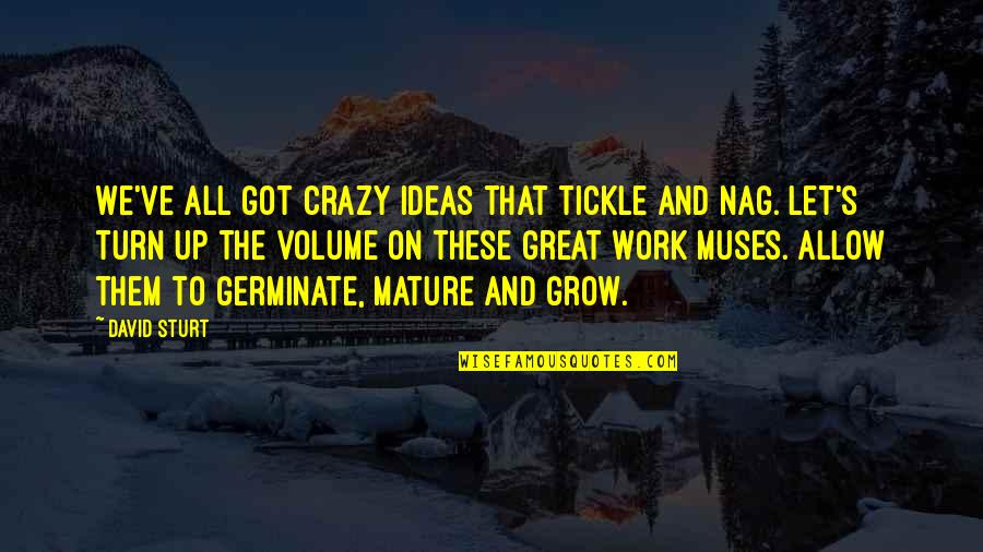 Right To Work Quotes By David Sturt: We've all got crazy ideas that tickle and