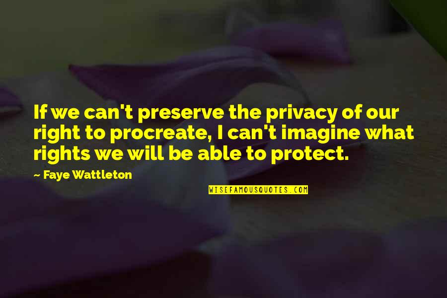 Rights To Privacy Quotes By Faye Wattleton: If we can't preserve the privacy of our