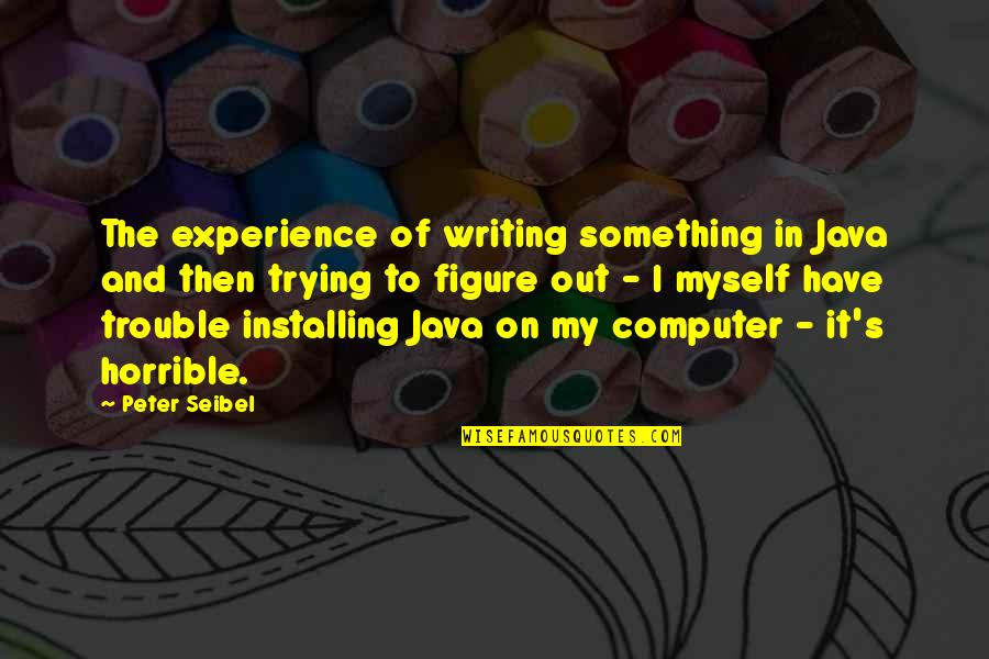 Riki Quotes By Peter Seibel: The experience of writing something in Java and