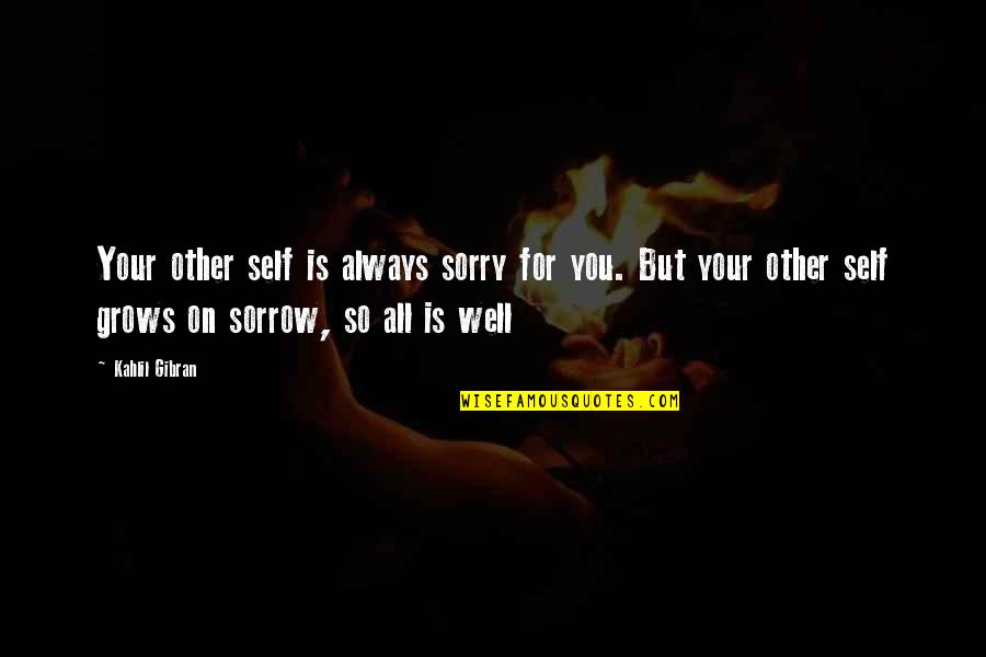 Rina's Quotes By Kahlil Gibran: Your other self is always sorry for you.