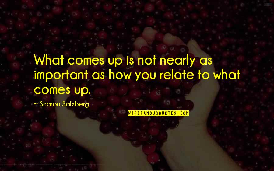 Ringo Bonavena Quotes By Sharon Salzberg: What comes up is not nearly as important