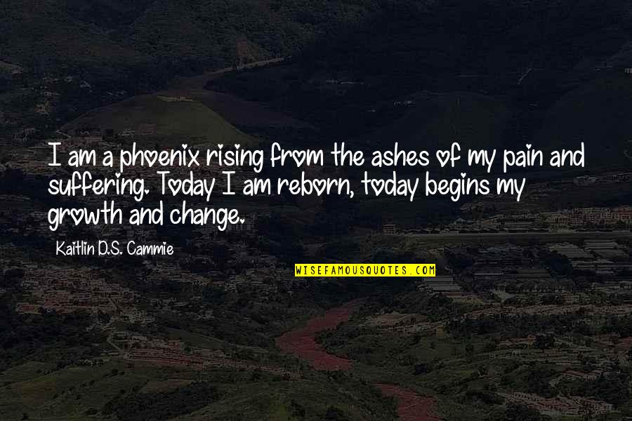 Rising From The Ashes Phoenix Quotes By Kaitlin D.S. Cammie: I am a phoenix rising from the ashes