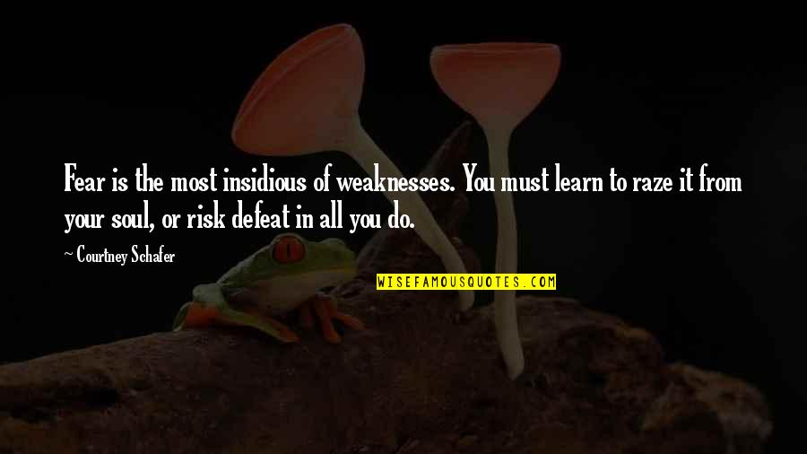 Risk Fear Quotes By Courtney Schafer: Fear is the most insidious of weaknesses. You
