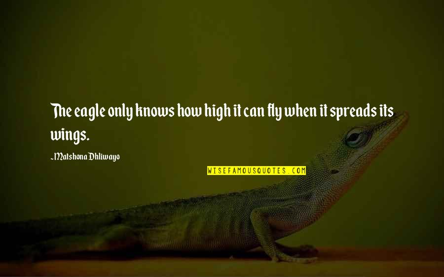 Risk Fear Quotes By Matshona Dhliwayo: The eagle only knows how high it can