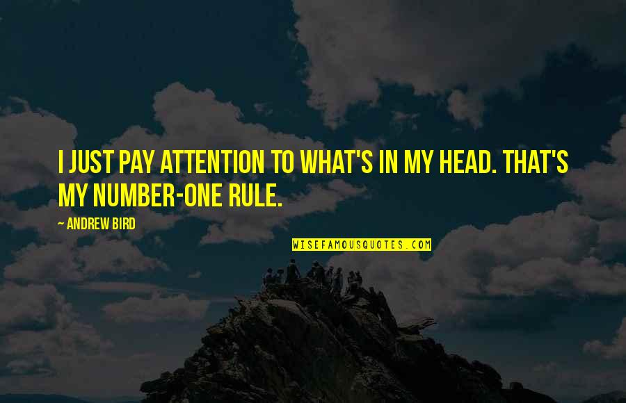 Risks Quotes And Quotes By Andrew Bird: I just pay attention to what's in my