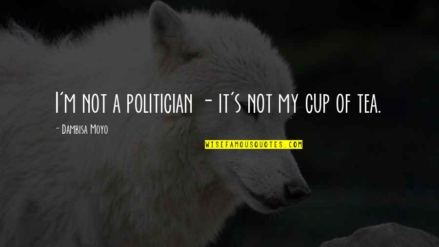 Riverboats Quotes By Dambisa Moyo: I'm not a politician - it's not my