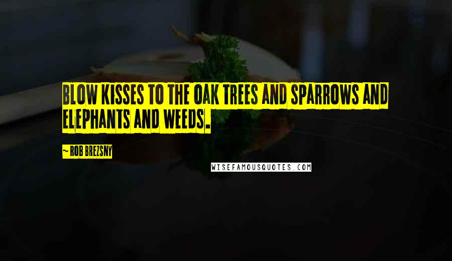 Rob Brezsny quotes: Blow kisses to the oak trees and sparrows and elephants and weeds.