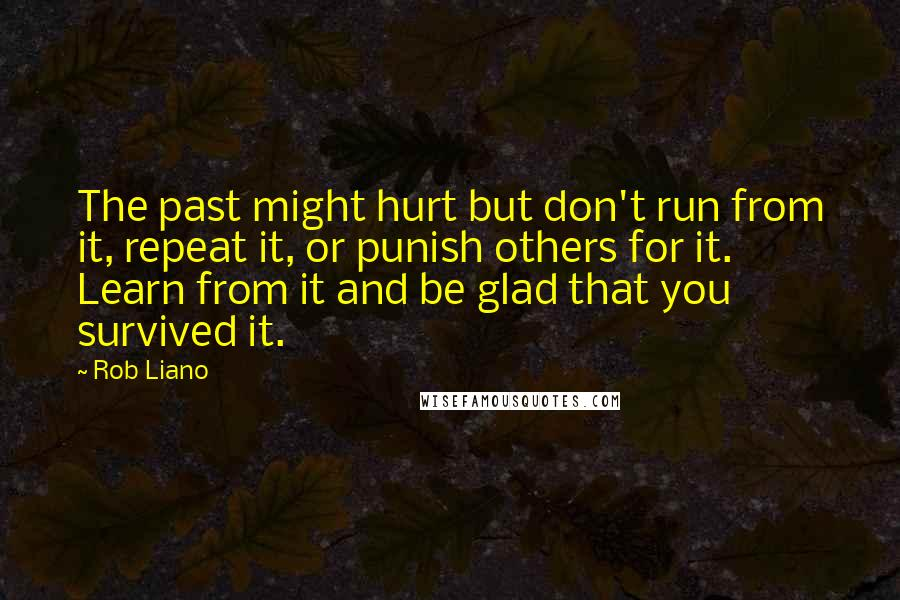 Rob Liano quotes: The past might hurt but don't run from it, repeat it, or punish others for it. Learn from it and be glad that you survived it.