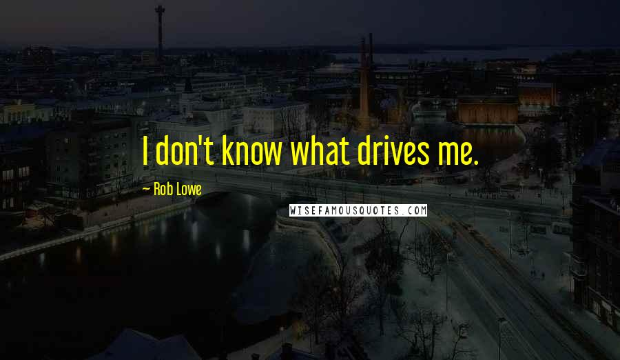 Rob Lowe quotes: I don't know what drives me.