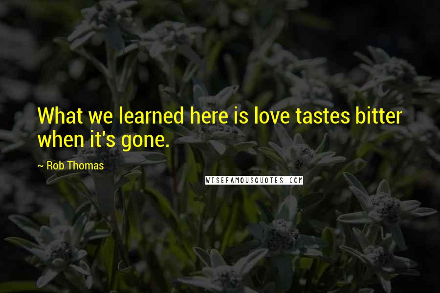 Rob Thomas quotes: What we learned here is love tastes bitter when it's gone.