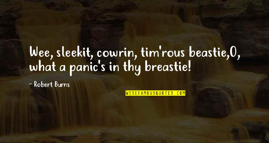 Robert Burns Quotes By Robert Burns: Wee, sleekit, cowrin, tim'rous beastie,O, what a panic's