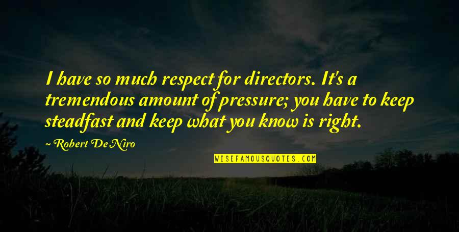 Robert De Niro Quotes By Robert De Niro: I have so much respect for directors. It's