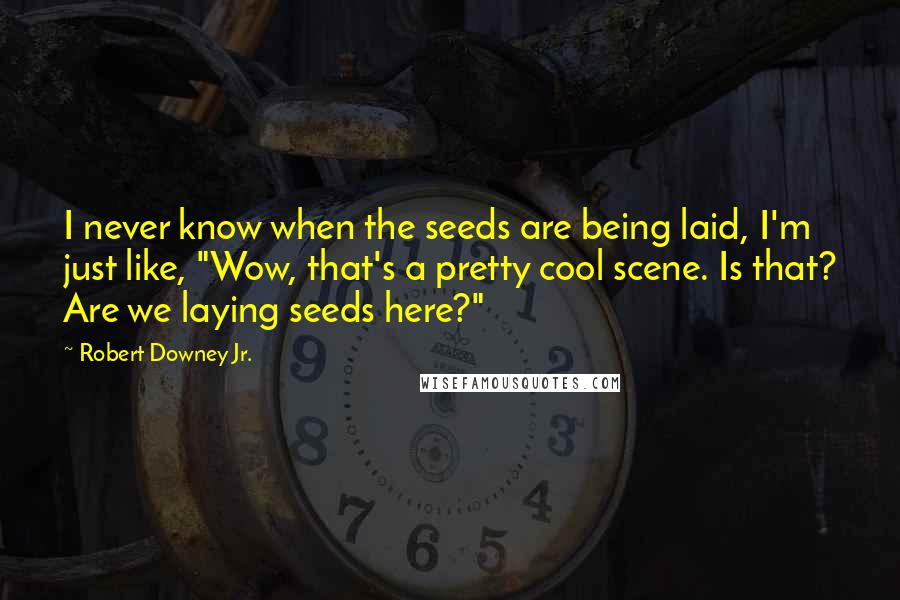 "Robert Downey Jr. quotes: I never know when the seeds are being laid, I'm just like, ""Wow, that's a pretty cool scene. Is that? Are we laying seeds here?"""