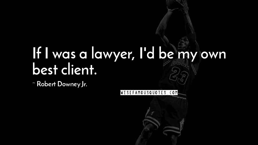 Robert Downey Jr. quotes: If I was a lawyer, I'd be my own best client.