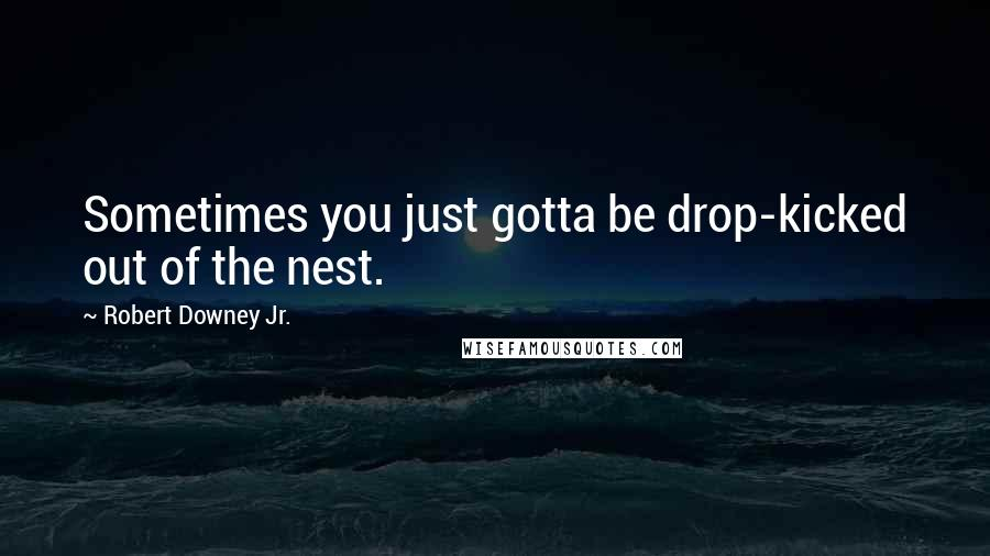 Robert Downey Jr. quotes: Sometimes you just gotta be drop-kicked out of the nest.