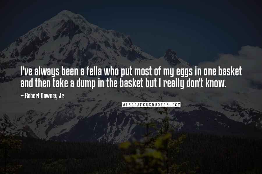 Robert Downey Jr. quotes: I've always been a fella who put most of my eggs in one basket and then take a dump in the basket but I really don't know.