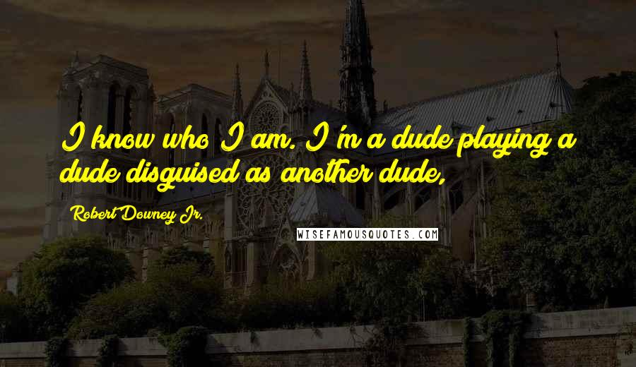 Robert Downey Jr. quotes: I know who I am. I'm a dude playing a dude disguised as another dude,